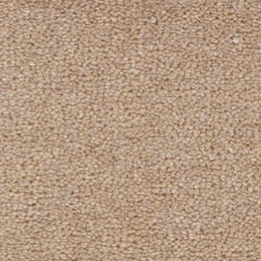 Ulster Velvet   <strong>Canvas</strong> - Canvas   W9209