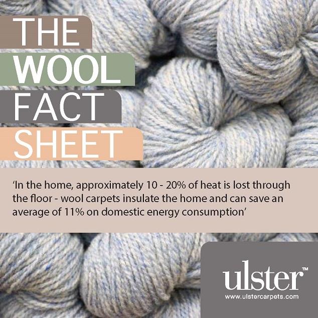 Wool Fact Sheet