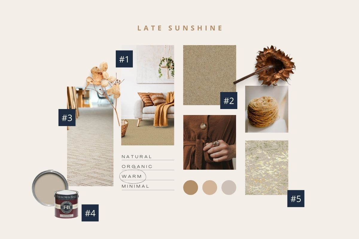 Late Sunshine